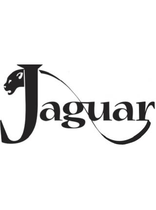 Автосигнализации Jaguar