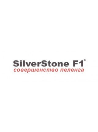 Автоэлектроника SilverStone