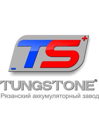 Аккумуляторы Tungstone, RAZ,  FOTON
